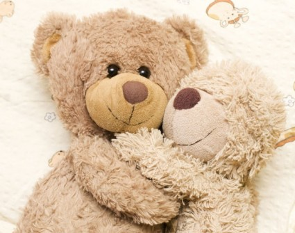 teddy_bear_toys