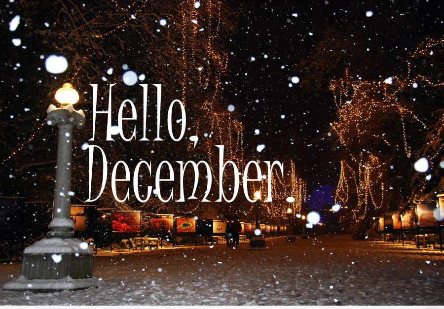 hello_december_pictures-32